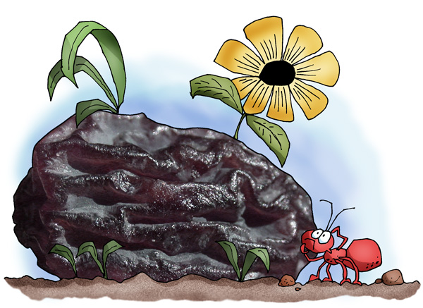 Raisins as rocks? Why not? Ask any ant...